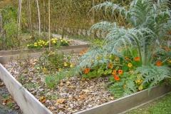 Jardin au carré oct.2010 002