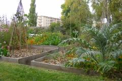 Jardin au carré oct.2010 006