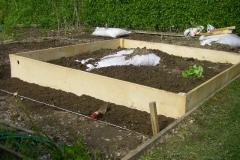 Jardin en carré 015
